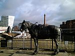 Liverpool Carters Workhorse statue 3.JPG