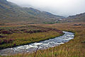 Lochbuie, Mull, Scotland, Sept. 2010 - Flickr - PhillipC.jpg