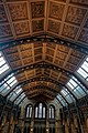 London - Cromwell Road - Natural History Museum 1881 by Alfred Waterhouse - Arch over the Central Hall - View North.jpg