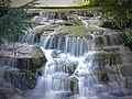 London Borough of Sutton - Carshalton - the waterfall.jpg