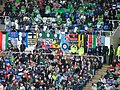 London Irish fans at the Madejski stadium.jpg