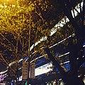 Longgang Central City, Longgang, Shenzhen, Guangdong, China - panoramio (4).jpg