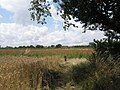 Looking over to Queensway from the footpath from St Peter's, Northney - geograph.org.uk - 1421214.jpg