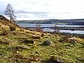 Looking towards Loch Fleet - geograph.org.uk - 704255.jpg