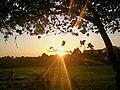 Low Autumn Sunset in Llanteg - geograph.org.uk - 1612994.jpg