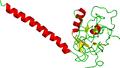 Lymphotoxin b receptor.png