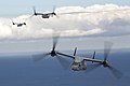 MV-22B Osprey flies over Sydney Harbour 6.jpg