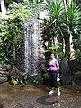 Madeira - Monte - Jardim Tropico (2092622769).jpg