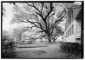 Magnolia Plantation, Louisiana Route 119, Natchitoches, Natchitoches Parish, LA HABS LA,35-NATCH.V,2-5.tif