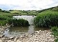 Man Sands Marsh.jpg