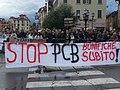 Manifestazione contro l'inquinamento da PCB.jpg