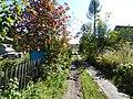 Mansky District, Krasnoyarsk Krai, Russia - panoramio (1).jpg