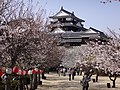 Marunouchi, Matsuyama, Ehime Prefecture 790-0008, Japan - panoramio (73).jpg