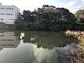 Matsubadaniike Pond 20190217-2.jpg