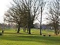 Maxstoke Park golf course - geograph.org.uk - 120449.jpg