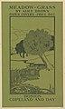 Meadow Grass MET DP824533.jpg