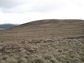 Auchinleish - The grassy hilltop of Meall Beag (139m) west of Auchinleish