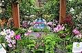Mediterranean Room at the US Botanic Garden (25404775164).jpg