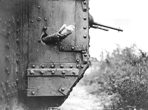 Messenger pigeon released from British tank 1918 IWM Q 9247