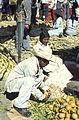 Mexico1980-203 hg.jpg