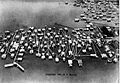 Milneburg From the Air 1921 H J Harvey.jpg
