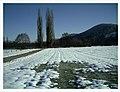 Minus 10 Grad Celsius Glottertal Germany - Magic Rhine Valley Photography - panoramio (8).jpg
