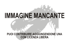 Immagine di Efraasia minor mancante