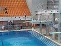Mistrzostwa Polski w skokach do wody 2019 - 12.jpg