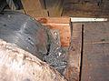Molen Tot Voordeel en Genoegen bovenas bronzen tegelplaat (1).jpg