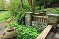 Morris Arboretum - DSC00536.JPG