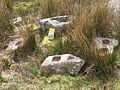 Mortarstones and mouldstone on Dartmoor.jpg