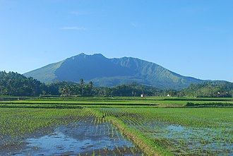 Buhi, Camarines Sur - Rice field at the foot of Mount Asog