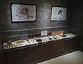 Musée-forum de l'Aurignacien - Collection - Objets découverts - 2016-05-22.jpg