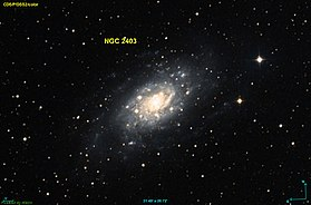 Image illustrative de l'article NGC 2403