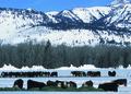 NRCSWY02021 - Wyoming (6907)(NRCS Photo Gallery).tif