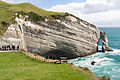 NZ020415 Cape Farewell 01.jpg