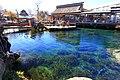 Naka Pond, Oshino, Yamanashi.jpg