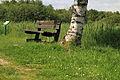 Nationaal Park Weerribben-Wieden. Bank onder een berk 02.JPG
