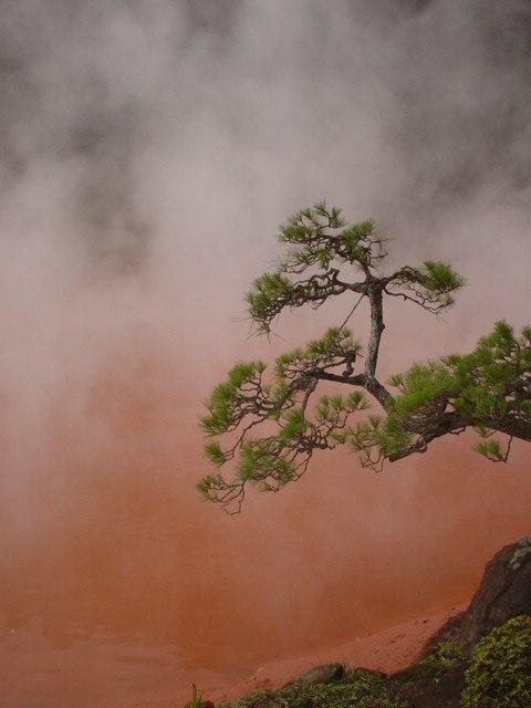 Natural iron hot spring