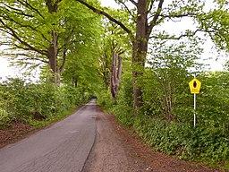 Hopfenweg in Norderstedt