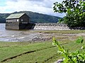 Near Brenachoile Lodge, Loch Katrine - geograph.org.uk - 219071.jpg