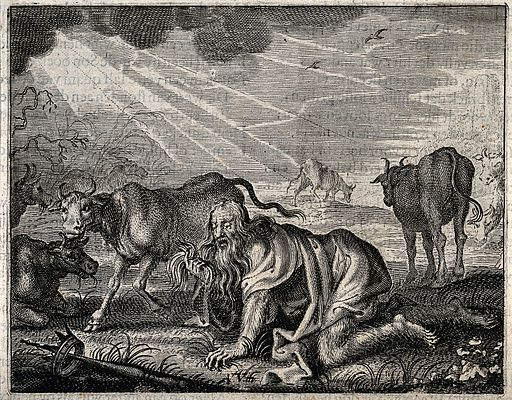 Nebuchadnezzar, gone mad, grovels like a beast of the earth; Wellcome V0034349