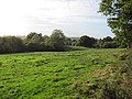 New Forest, Hampshire (460998) (9455070055).jpg