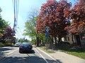New Jersey State Route 94 New Jersey State Route 94 (17513230032).jpg