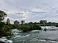Niagara Falls State Park - 20190815 - 19.jpg