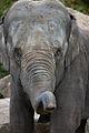 Noorder dierenpark (3987608084).jpg
