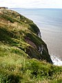 North Cliff scenery - geograph.org.uk - 1419590.jpg