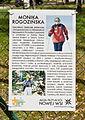 Nowa Wieś, Aleja, Monika Rogozińska.jpg