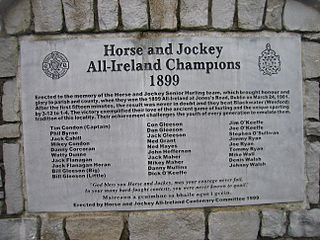 1899 All-Ireland Senior Hurling Championship Final