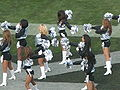 Oakland Raiderettes at Falcons at Raiders 11-2-08 06.JPG